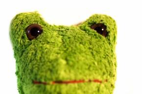 Kuscheltier Frosch vegan von Kallisto grün